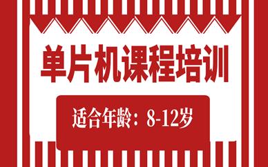 广州8-12岁单片机机器人课程