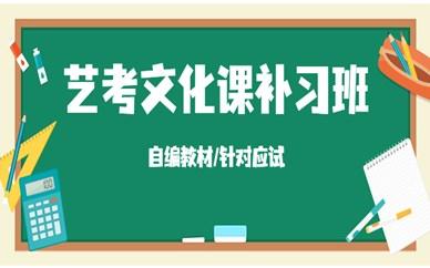 南京鼓楼艺考文化课一对一培训价格