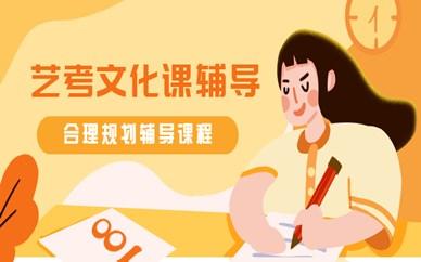 南京鼓楼秦学艺考文化课辅导班