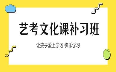 郑州中原艺考文化课补习班