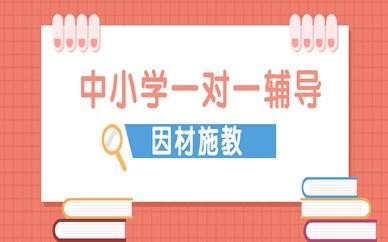 漯河郾城中小学1对1补习