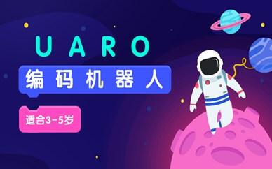 沈阳乐博UARO幼儿机器人编程班