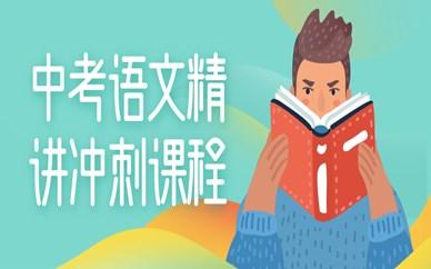 武汉中考语文作文精讲精选课